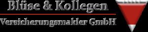 Blüse & Kollegen Logo